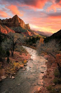 Travel Memory The Watchman Mountain Hiking Trail, Zion National Park, Utah, USA. I want to hike there! Parc National, Zion National Park, National Parks, Zion Park, National Forest, Places To Travel, Places To See, Beautiful World, Beautiful Places