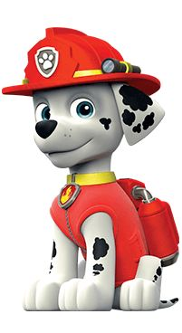 Read on for some fun facts about the PAW Patrol Live characters! Paw Patrol Masks, Paw Patrol Party, Paw Patrol Birthday, Paw Patrol Marshall, Personajes Paw Patrol, Imprimibles Paw Patrol, Quilling Birthday Cards, Paw Patrol Cake Toppers, Baby Girl Drawing