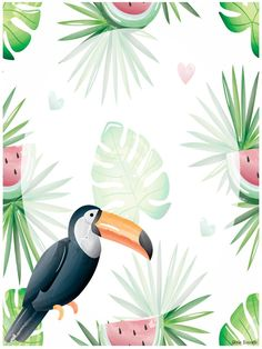 Dessus pour vos cartables modifiables! Free Frames, Class Decoration, Flower Wallpaper, Classroom Decor, Tropical, Education, Toucan, Image, Bullet