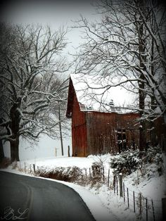 Country in the winter, typical scen you'd see driving down the road in NE PA.