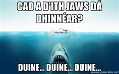 """What does Jaw have for dinner?) """"Duine"""" means """"people"""" in Irish. Now hum Jaws Theme song. Irish Puns, Irish Memes, Irish Humor, Gaelic Quotes, Irish Quotes, Irish Sayings, Irish Toasts, Irish Store, Irish Language"""