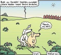 - Bak şu ilerdeki taştan, şurdaki çitlere kadar hepsi benim arazim. + Tapulu mu abi? - Çişli. + Daha iyi... #karikatür #mizah #matrak #komik #espri #şaka #gırgır #komiksözler
