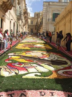 Infiorata di Noto, Sicily ~ one of the most colorful festivals in the world. Takes place every year, third weekend in May. Italian Life, Italian Villa, Places To Travel, Places To See, Cruise Italy, November Wallpaper, Visit Florence, Best Of Italy, Festivals Around The World