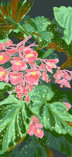 锻炼左手的绘画能力~~~ Art Flowers, Flower Art, Plant Leaves, Plants, Ideas, Plant, Thoughts, Artificial Flowers, Planting