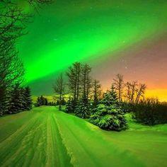 Güzel Aurora