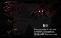 Talyn ortho by unusualsuspex.deviantart.com on @deviantART