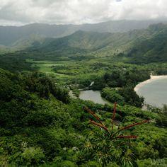 Crouching Lion hike in Hawaii. A view of Kahana Bay and Valley. #hiking #Hawaii #oahu