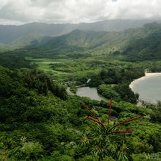Crouching Lion hike in Hawaii. A view of Kahana Bay and Valley. #hiking #Hawaii #oahu