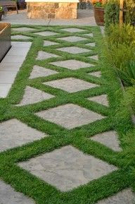Love this English walk way look for a patio boarder.  Have seen similar with blooming moss instead of grass.