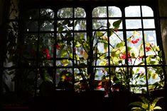 Ventana interior Painting, Art, Interior Windows, Naturaleza, Fotografia, Art Background, Painting Art, Kunst, Paintings
