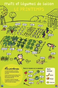 Fruits et légumes – Printemps – Best Pins Live Diy Jardim, Potager Bio, Potager Garden, French Lessons, Teaching French, Green Life, Learn French, French Language, Aquaponics