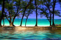Paradise Island - The Bahamas