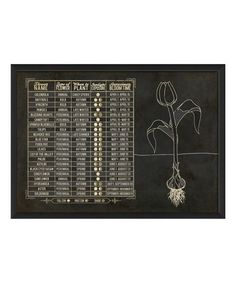 Love this Flowers Planting Chart Framed Wall Art by The Artwork Factory on #zulily! #zulilyfinds