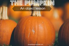 pumpkin object lesson for kids