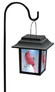 "Cardinal Solar Lantern Stake by Miles Kimball by Miles Kimball. $19.99. Stunning artwork graces all four sides of our solar-powered lanterns-glowing each night without electricity. Each includes on/off switch and hanging stake for easy assembly; simply insert in ground and enjoy! Lantern: 5 1/3"" square x 6"" high. Pole: 23"" high."