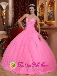 quinceanera dresses from mexico | Quinceanera dress >> Pink >>> Zitacuaro Mexico Winter Quinceanera ...