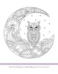 Owl & Moon - Free Adult Coloring Page Owl Coloring Pages, Adult Coloring Book Pages, Colouring Pics, Mandala Coloring Pages, Printable Coloring Pages, Coloring Sheets, Coloring Books, Free Adult Coloring, Embroidery Patterns