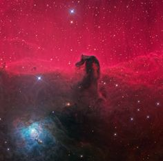 The great Orion Nebula might be the easiest deep-sky object to spot, but to telescope-equipped skywatchers, the Horsehead Nebula is even more spectacular. Located along Orion's Belt, just south of… Horsehead Nebula, Orion Nebula, Helix Nebula, Carina Nebula, Andromeda Galaxy, Milk Way Galaxy, Marie Tudor, Cosmos, Nebula Wallpaper