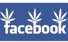 New Orleans Lawyers Google Juice Mexico Beach Fl, Caribbean Real Estate, Good Morning Vietnam, Altamonte Springs, Lead Generation, Medical Marijuana, Cannabis, New Orleans Homes, International Real Estate
