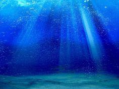 Deep Sea Pack 2 Live Wallpaper- スクリーンショット