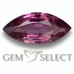 GemSelect features this natural untreated Rhodolite Garnet from Mozambique. This Red Rhodolite Garnet weighs 1.1ct and measures 9.6 x 4.6mm in size. More Marquise Facet Rhodolite Garnet is available on gemselect.com  #birthstones #healing #jewelrystone #loosegemstones #buygems #gemstonelover #naturalgemstone #coloredgemstones #gemstones #gem #gems #gemselect #sale #shopping #gemshopping #naturalrhodolitegarnet #rhodolitegarnet #redrhodolitegarnet #marquisegem #marquisegems #redgem #red