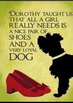 A Nice Pair Of Shoes And A Very Loyal Dog Puppies Dogs Loyal