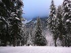 Submitted by  on Reddit. Pemberton British Columbia [2592 x 1936]