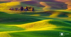 Golden Hills by Mark Brodkin on 500px