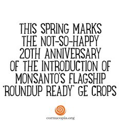 Farmers bought into RoundUp Ready corn, soy and cotton in a big way. Now, 85% of all corn and 90% of all soybeans grown in the U.S. have that trademarked RoundUp Ready gene. RoundUp Ready is king of the hill when it comes to commodity seeds — but not for long. Five years from now, RoundUp Ready may be nothing more than a relic of the past. See more: http://www.cornucopia.org/2014/06/happy-anniversary-monsanto #GMOs #StopMonsanto #Roundup #food