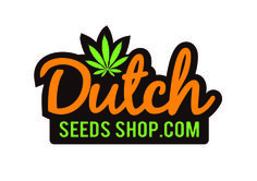 Buy Best Breeds of Feminized Seeds at Our Online Store.