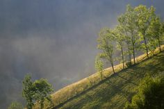 So, Transylvania - where is Sighet?these are the Apuseni Mountains near Arieșeni, Alba County Vineyard, Places To Visit, Country Roads, Mountains, Landscape, Outdoor, Google Search, Romania, Love