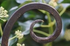 Heart Ring, Rings, Jewelry, Ornamental Plants, First Aid, Hang In There, Metal, Jewlery, Bijoux