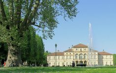 Questo imponente albero, che è il più vecchio della città di Torino, è alto oltre 25 metri ed ha un tronco nodoso e robusto la cui circonferenza...