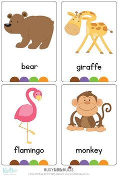 Brand new set of at the Zoo flash cards! All brightly coloured and of high quality. There are 24 brightly coloured, high quality printable flash cards in this pack. Please contact me if you would like these cards in another font. Preschool Worksheets, Preschool Learning, Preschool Activities, Teaching Kids, Kindergarten Science, Kids English, English Lessons, Flashcards For Kids, English Activities