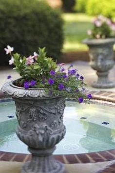 How to plant in urns