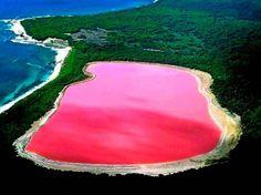 Este lago rosa, no es una ilusión óptica, ni está pintado, está ubicado en Las Coloradas Yucatán,  y literalmente es rosa.