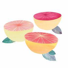 Grapefruit illustration by Marisa Seguin Fruit Illustration, Pattern Illustration, Food Illustrations, Graphic Illustration, Gouache, Sketches, Art Prints, Drawings, Artwork