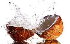 Elagua de cocono es una bebida como cualquier otra –no por nada Jessica Alba le está haciendo publicidad por todos lados. Se dice que es milagrosa. De hecho, casi todos los productos que prometen juventud eterna contienen desde el agua hasta el aceite de coco.