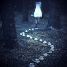 Alice in Wonderland / karen cox.  The tea cup trail by astridle ( Lara Zankoul #photography )