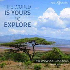 An epic African Safari Tour through Ngorongoro, Serengeti and Lake Manyara National Park #Africa #Safari #Ngorongoro #Serengeti #Lake #Manyara #adventure #Arusha #Tanzania #nature #birds #animals #wildebeests #Zebras #lions #traveller #bestoftheday #nofilter #vacation #travel #passportready #tourist #trip