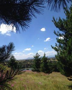 El día es muy bonito!. Y el lugar más. #presa #mexico #pinos #encinos #sol #flores #paseo #nubes