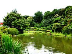 Japanese garden that was taken in Tokyo in June. Green feels very many.
