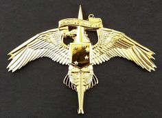 Marine Corps Forces Special Operations Command MARSOC Raiders Insignia Badge Pin