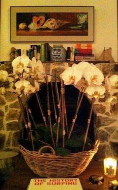 <3 this for the fireplace in the summer!