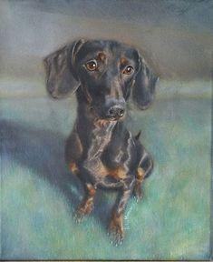 Commissioned Pet Portrait Acrylic Painting x Canvas Portrait Acrylic, Daschund, Pet Portraits, Paintings, Canvas, Pets, Animals, Tela, Animaux