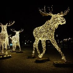 The Old Town Christmas Market and #Stockholmsjul – Get into the Christmas spirit for free!