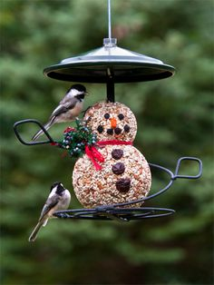 for the birds - Buttons the Snowman - Seed Cylinder is a seasonal mix of safflower, sunflower chips, peanuts, cherries, blueberries and papaya to attract a variety of  birds.