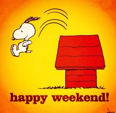 Happy Weekend! pic.twitter.com/sgFiA7pmTF