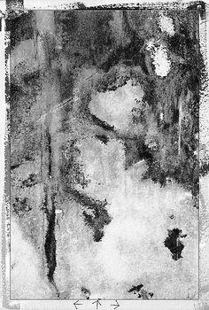 """dickinson:vastness"" by william marzulla"