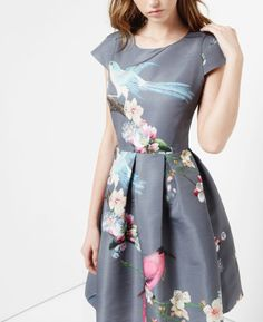 Weddings, maybe work with a navy blazer. Ted Baker Flight of the Orient print dress